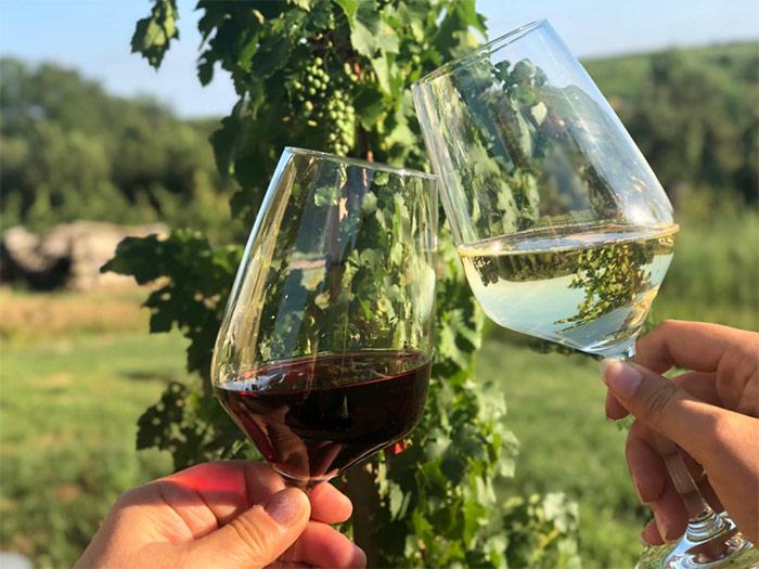 Weinprobe in Ihringen